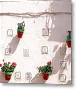 Geraniums Ganging Up Metal Print