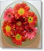 Gerbera Daisies - From Above Metal Print
