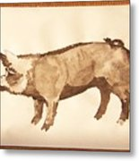 German Pietrain Boar 31 Metal Print
