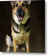 German Shepherd Dog Thor Metal Print