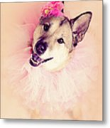 German Shepherd Mix Dog Dressed As Ballerina Metal Print by R. Nelson