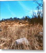 Gerttysburg Series Little Round Top Metal Print