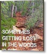 Getting Lost In The Woods Metal Print