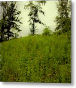 Gettysburg Landscape Metal Print