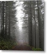 Ghost In The Woods Metal Print