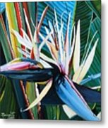 Giant Bird Of Paradise Metal Print
