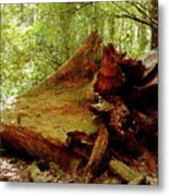 Giant Has Lived Its Life Metal Print