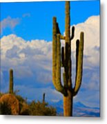 Giant Saguaro In The Southwest Desert  Metal Print