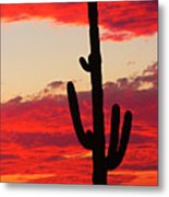 Giant Saguaro  Southwest Desert Sunset Metal Print