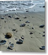 Gifts From The Ocean Metal Print