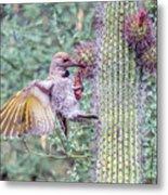 Gilded Flicker 4167 Metal Print