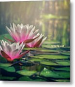 Gilding The Lily Metal Print