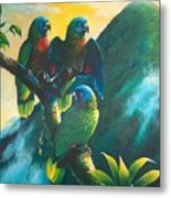 Gimie Dawn 1 - St. Lucia Parrots Metal Print