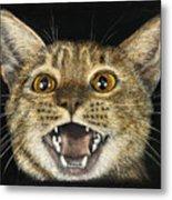 Ginger Cat Eyes Metal Print