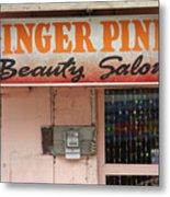 Ginger Pink Metal Print