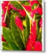 Ginger Plants On Kauai Metal Print