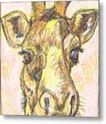 Giraffe Postcard Metal Print