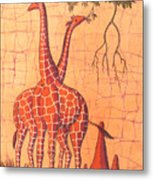 Giraffes Feeding Metal Print