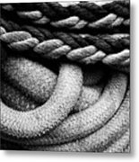 Give Them Some Rope Metal Print