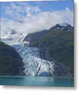 Glacier Bay Afternoon Metal Print