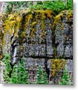 Glacier Np Moss Metal Print