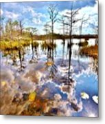 Glades Reflective 1 Metal Print