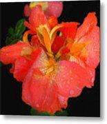 Gladiolus Bloom - Digital Art Metal Print