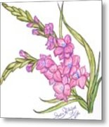 Gladiolus Pink Metal Print