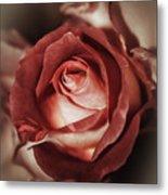 Glamorous Rose Metal Print