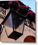 Glass Light Housing With Red Flower Architecture In Saint August Metal Print