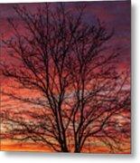 Glen Iris Sunrise Metal Print