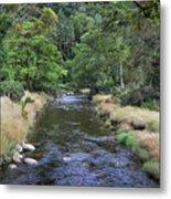Glendasan River. Metal Print