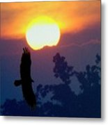 Gliding By The Sun Metal Print
