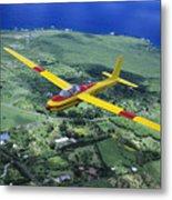 Gliding Over Hana Metal Print