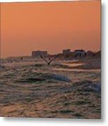 Gliding The Beach Metal Print