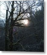 Glimpse Of Hope Metal Print
