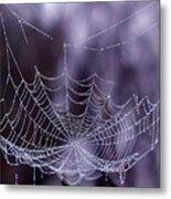 Glistening Web Metal Print