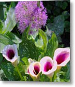 Globe Thistle And Calla Lilies Metal Print by Corey Ford