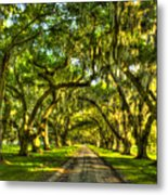 Glorious Entrance Tomotley Plantation South Carolina  Metal Print