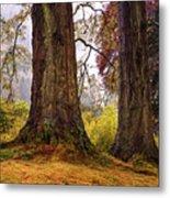 Glorious Fall In Benmore Botanical Garden. Scotland Metal Print