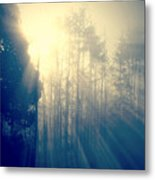 Glorious Morning Light Metal Print