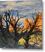 Glove Rock Metal Print