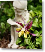 Gnome And Columbine Metal Print