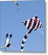 Go Fly A Kite Metal Print