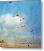 Go Fly A Kite Metal Print