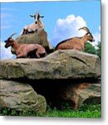 Goats On The Rock Metal Print