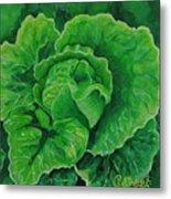God's Kitchen Series No 5 Lettuce Metal Print