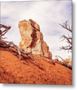 Going Down The Slope At Kodachrome Basin State Park. Metal Print