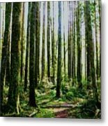 Going Green Metal Print by Dean Edwards