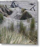 Gold Beach Oregon Beach Grass 15 Metal Print